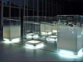 Upside Down - Les Arctiques - Musée du Quai Branly 2