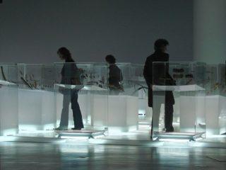 Upside Down - Les Arctiques - Musée du Quai Branly