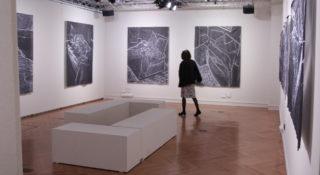 Exposition Nuit Banches, Derek Besant