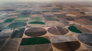 Watermark - Edward Burtynsky - Capture de la vidéo