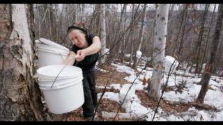 centre-culturel-canadien-sol-souverain-ecologie-nature-agriculture-responsable-cinema-film-projection