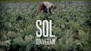 sol-souverain-centre-culturel-canadien-film-projection-en-ligne